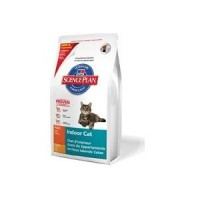 Hills Feline Adult Indoor Cat seco 4 kg