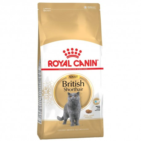 Royal Canin cat BRITISH SHORTHAIR 34 10 kg