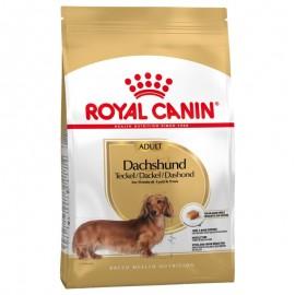 Royal Canin Razas DACHSHUND 28 7,5kg Teckel